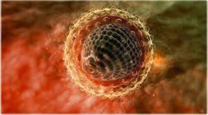 virus hepatitisa